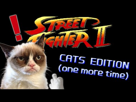 Street Fighter: Cats Edition (one more time) - Marca Blanca