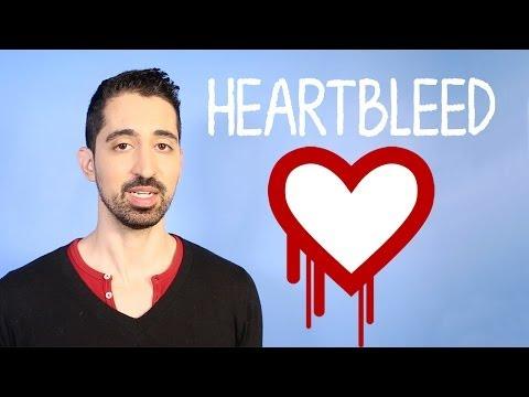 What Is the Heartbleed Encryption Bug?   Mashable Explains
