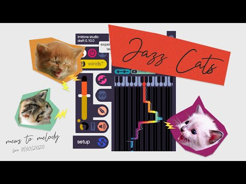 JAZZ CATS TUESDAY BLUES (6 PST) - Live Kitten Cam powered by imitone