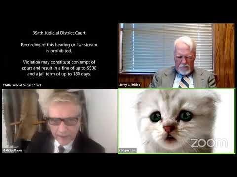 Kitten Zoom Filter Mishap