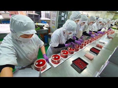 케익공장의 압도적인 대량생산 6편 몰아보기(Amazing Cake Factory Mass Production-Korean Food)