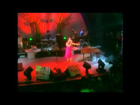 Bjork - Shepherds Bush Empire