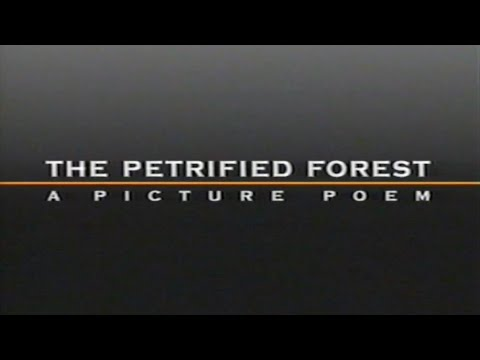 The Petrified Forest - A Picture Poem (Full Movie VHS)