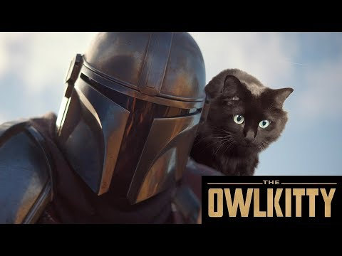 If Baby Yoda was a Cat (Mandalorian + OwlKitty)