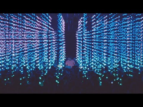 Four Tet - Teenage Birdsong (Official Music Video)