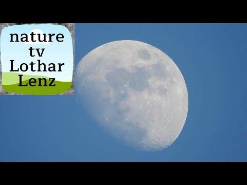 Nikon coolpix P900 83x optical zoom world record - video test on moon