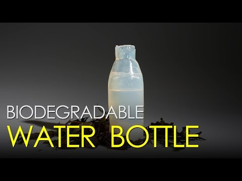 This biodegradable water bottle could replace plastic
