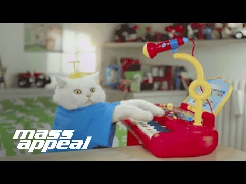 Run the Jewels - All Meow Life (Nick Hook Remix) (Official Video)