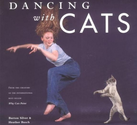 small_dancing_with_cats_-_cover