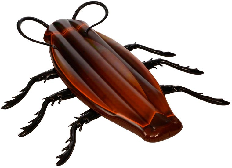 cockroach-pool-float-1