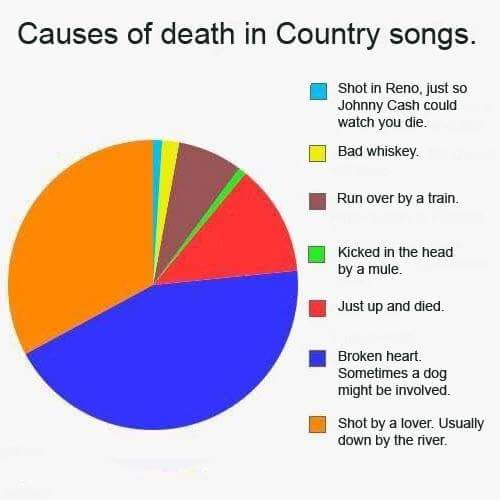 Causes of Death in Country Songs
