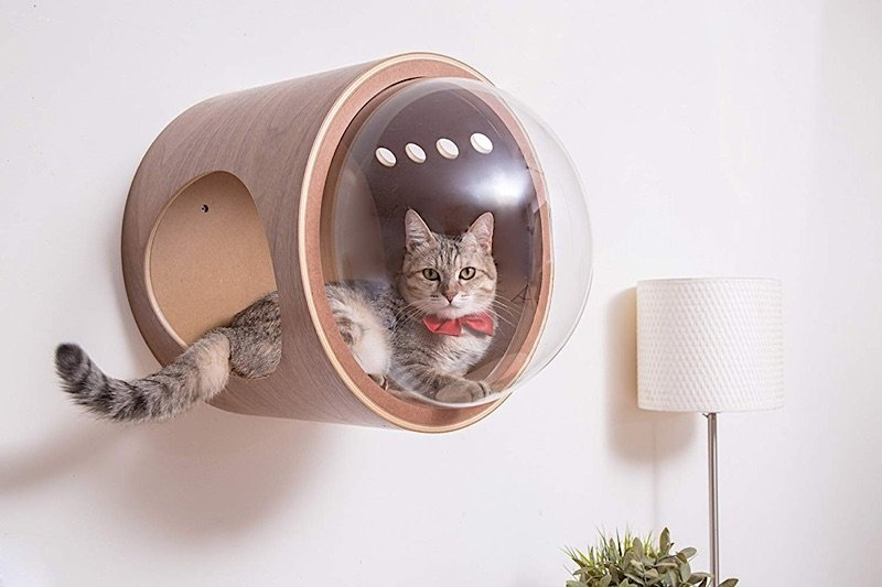 Retro Futuristic Cat Homes