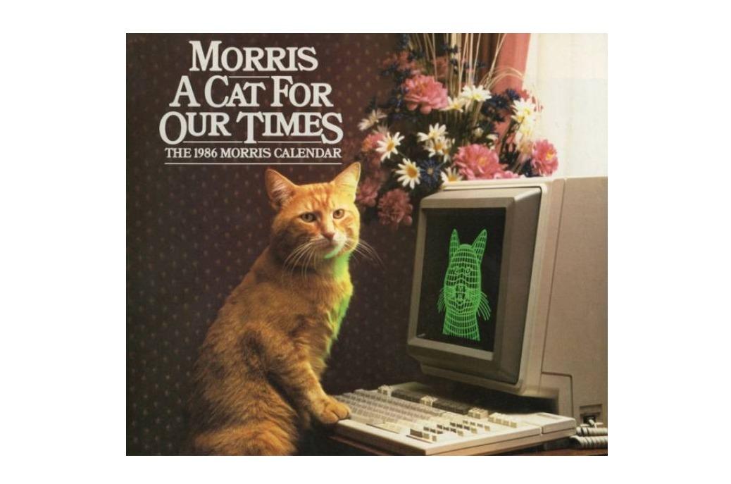 Morris A Cat For Our Times (Vintage Calendar)