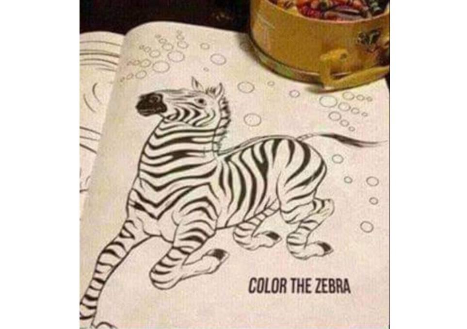 Color the Zebra 🤷♂️