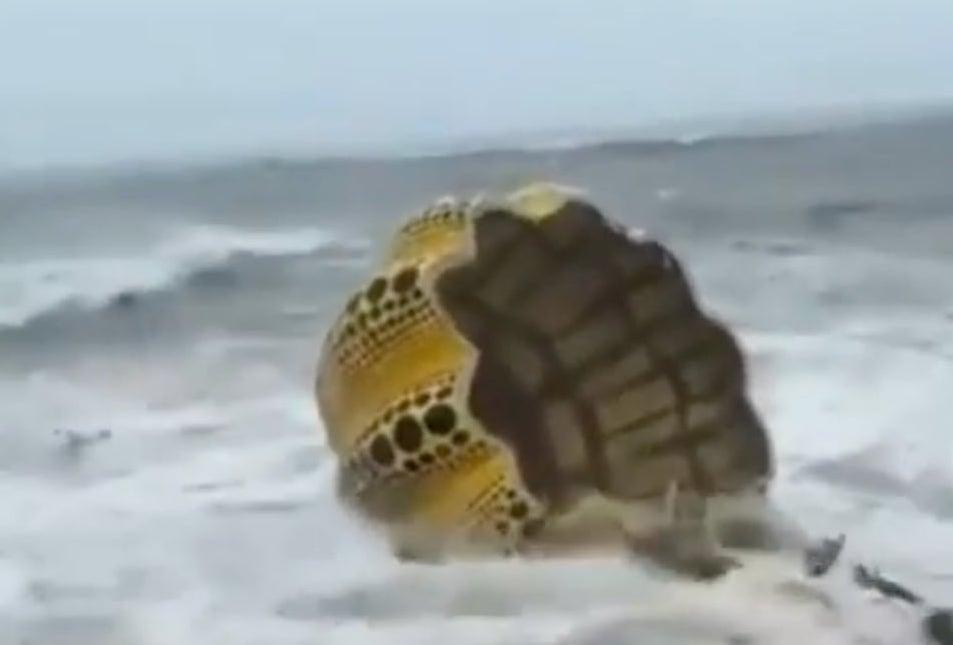 Yayoi Kusamas 'Yellow Pumpkin' washed away in a typhoon 🌪